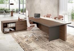 Top management desk OASI
